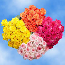 global roses globalrose fresh assorted color s day roses 100 stems