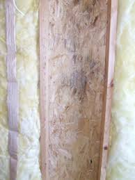 Best Way To Insulate A Basement by Mold Growth Under Fiberglass Insulation How To Prevent