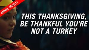 graphic peta ad which urges to go vegan for thanksgiving is
