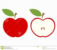apple illustrations clipart