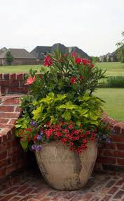 Large Planters Cheap by 5357 Best Planters Garden Pots Images On Pinterest Flowers