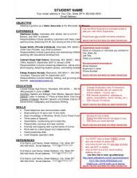 Social Work Resume Examples by Resume Profile Statement Examples Examples Of Resume Profiles