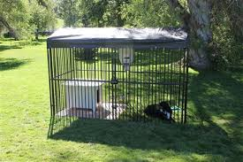 ultimate european dog kennel