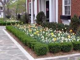 Landscaping For Curb Appeal - 7 tips for great front yard landscaping and curb appeal kg