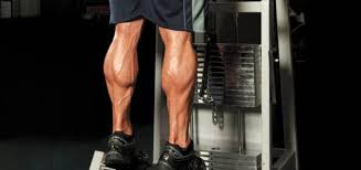 Guys Calf - 4 calf exercises that ll give you calves you can be proud of