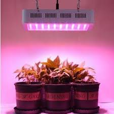 horticultural led grow lights horticultural lighting group hydroponics square led grow ls 5