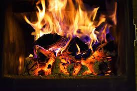 mf fire seed seedinvest