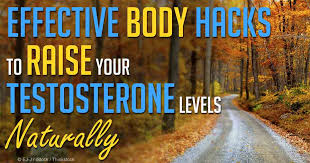9 ways to naturally increase testosterone levels