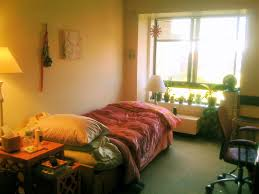 student housing and me a love story life at nyu law