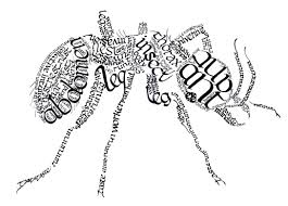 not is it only writing practice its art u0026 learning about the ant