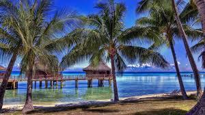 houses fabulous bungalow resort paradise beach bungalows sea