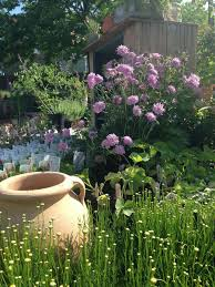 petals u0026 hedges garden services and design in va