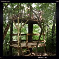 38 brilliant tree house plans tree houses house and treehouse