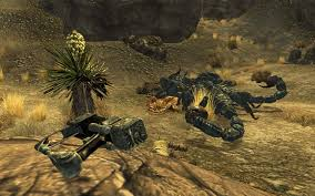 Fallout New Vegas Map Locations by Missing Laser Pistol Fallout Wiki Fandom Powered By Wikia