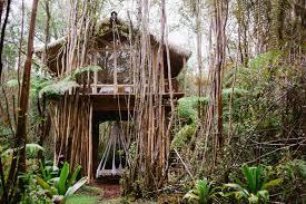hawaii tiny house habitats hawaii tiny house builders jay nelsons