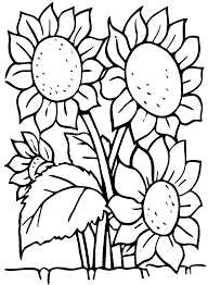 sunflowers flowers coloring pages for kids to print u0026 color
