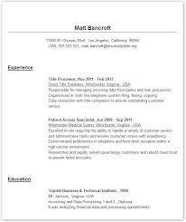 Example For Resume Title by Examples For Resumes Resume Templates
