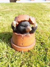 flower pot garden ornament