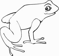 awesome idea frog outline printable images clip art tattoo