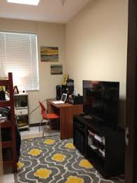 Guy Dorm Room Decorations - 6 college decorating tips for guys decorating on a budget