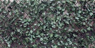 wonderwal artificial hedge screening trellis ivy artificial