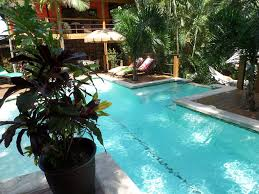Swimming Pool Canopy by Spectacular Jungle Canopy Tree House With W Vrbo