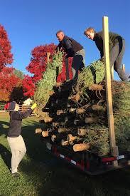 talbot optimist christmas tree sales begin life stardem com