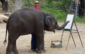 The Blind Men And The Elephant Analysis Elephant Artists Here U0027s Why Making An Elephant Paint Is Cruel