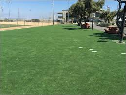 backyards trendy 25 best ideas about fake lawn on pinterest