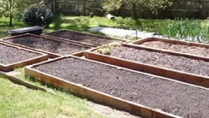 best soil for raised garden beds gardening ideas