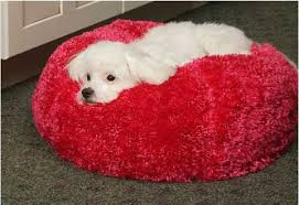 Washable Dog Beds Dog Beds Pet Nap Silky Fleece Ball Pet Bed Pets Trends