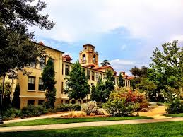 50 best value colleges for a psychology degree best value schools