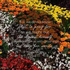 16 bible verses images scriptures bible