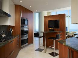 kitchen modern kitchen design custom kitchens kitchen cabinet