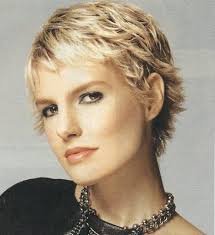 shag haircut 1970s short shag hairstyles worldbizdata com