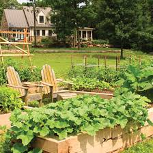 Square Foot Garden Layout Ideas Square Foot Garden Planner 16 Fascinating Square Foot Gardening