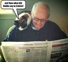 Newspaper Cat Meme - who says reading the paper has lost its thrill lolcats lol
