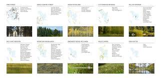 blue mountains native plants the restoring of a montane landscape 2016 asla professional awards