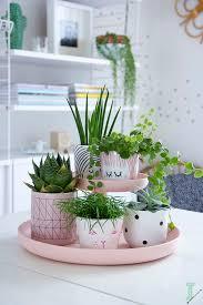 Indoor Plant Arrangements 1584 Best Indoor Planters Pots Images On Pinterest Plants