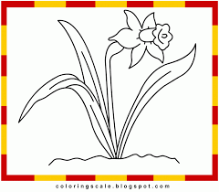 printable daffodil cliparts free download clip art free clip