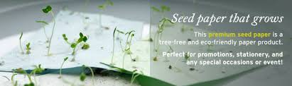 plantable seed paper how plantable paper works online hochzeitsshop