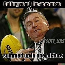 Footy Memes - collingwood meme afl pinterest meme and american football memes