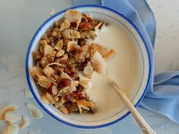 coconut granola the candida diet