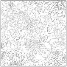 amazon com spring serenade coloring book with bonus
