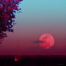 Pink Moon Super Huge Pink Moon Over The River This Is An Impression U2026 Flickr
