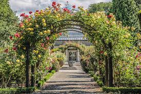Botanical Gardens Images by Botanical Garden Pictures Images And Stock Photos Istock