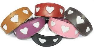 afghan hound collars uk greyhound dog collars whippet collars afghan dog collar dog collars