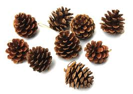 4cm pine cones deal apple for trees ornament