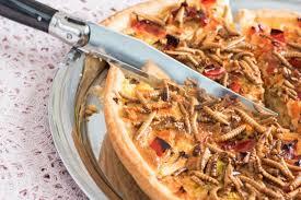 insectes dans la cuisine des insectes dans nos assiettes l illustré