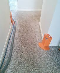 carpet cleaning newport i best carpet cleaners